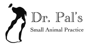 Doctor Pal's Logo